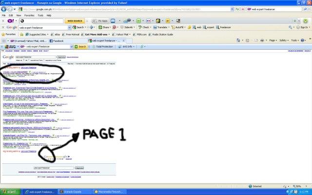 Online Web Expert Freelancer in Google